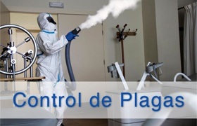 Servicio de Control de Plagas | Limpiezas Aqua