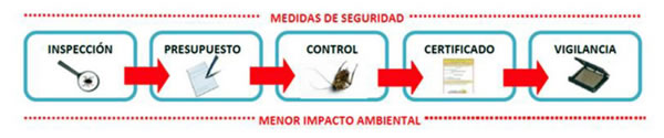 Control de plagas | Limpiezas Aqua